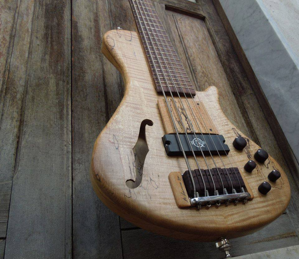 Cavus power ZEN-belcanto 6 string bass with a neodymium bass pickup. Luthier Pasquale Lodato