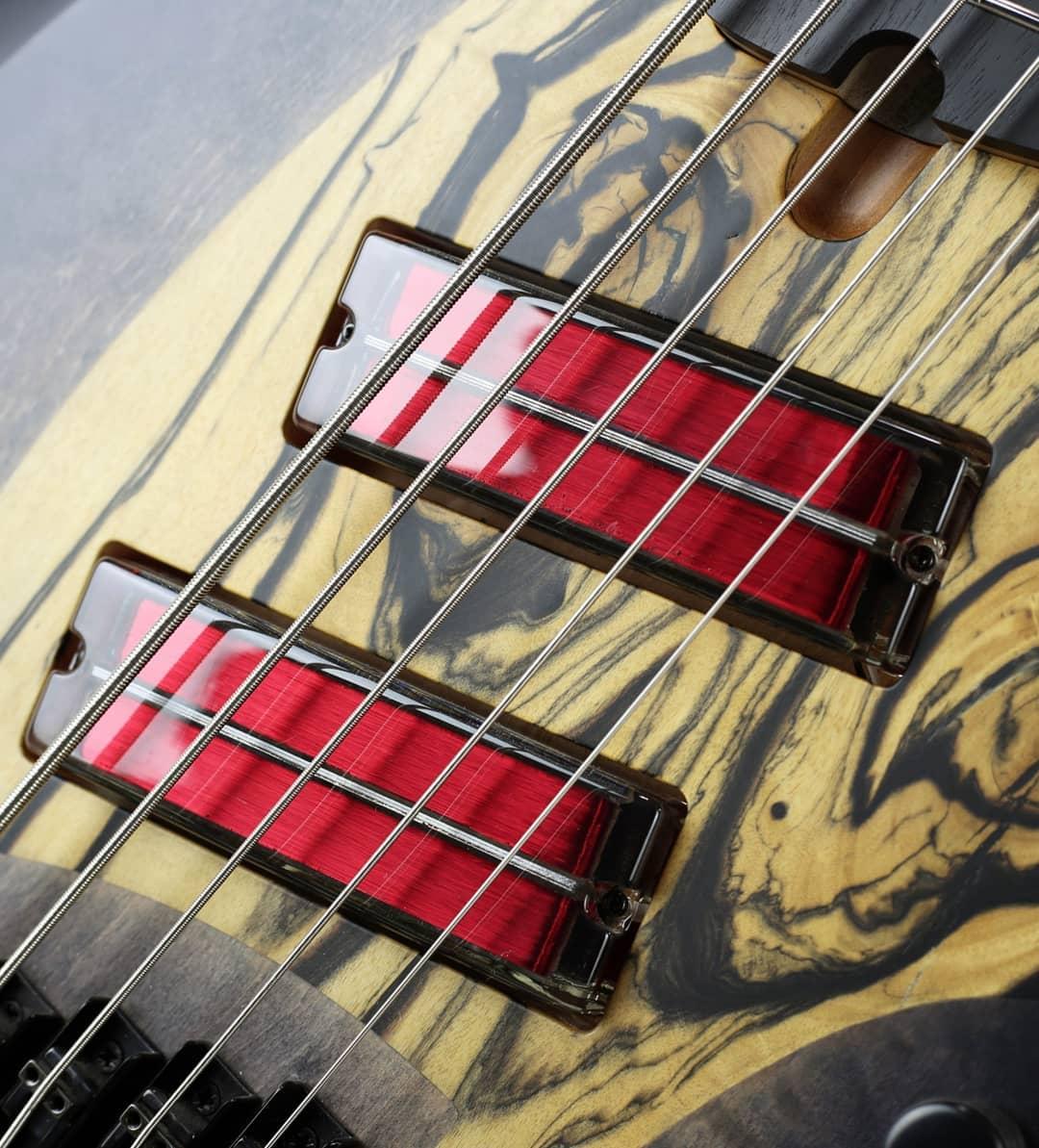 skervesen signature 5 string bass q-tuner neodymium pickups