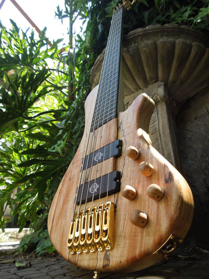 Lodato 5 string bass equipped with q-tuner pickups