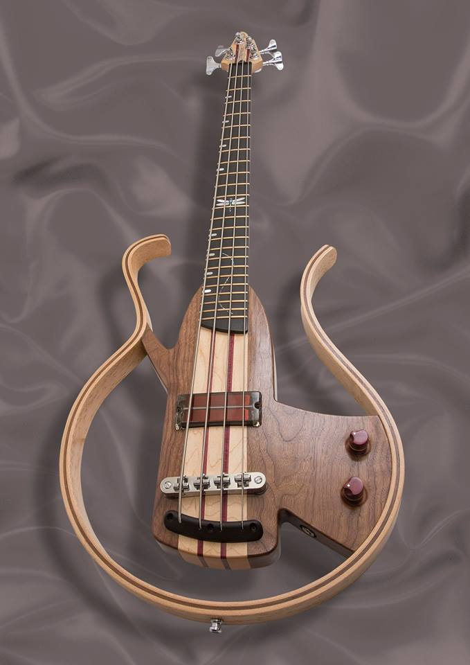 Dragonfly bass with a 4 string transparent q-tuner