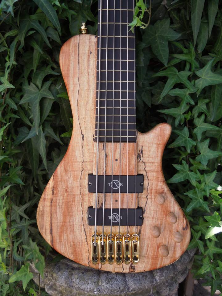 bass corpus-power-pompei made by Chitarre lodato fitted with Q-tuner neodymium pickups